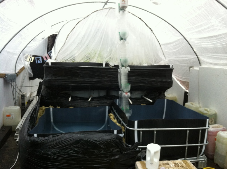 The Polytunnel all wrapped up