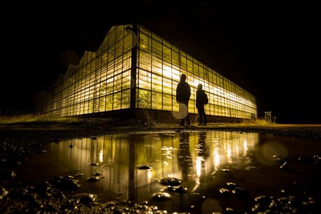 iceland-greenhouse